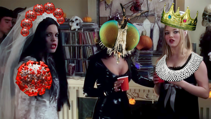 The 'Mean Girls' Halloween scene but edited, making Cady Haron as a 'coronavirus' bride, Gretchen Wieners the 'Mike Pence fly,' and Karen Smith as a slutty 'Notorious Ruth Bader Ginsburg.'