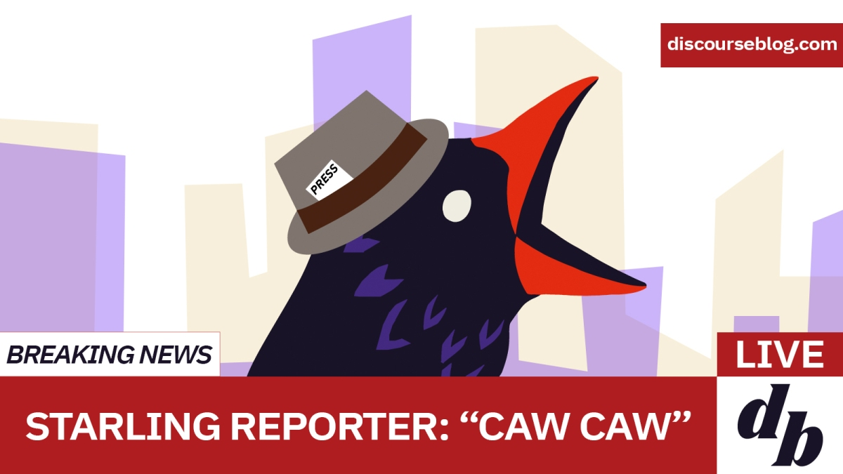 """The Discourse Blog bird on live television, the chyron saying, """"Caw Caw, Bitch."""""""