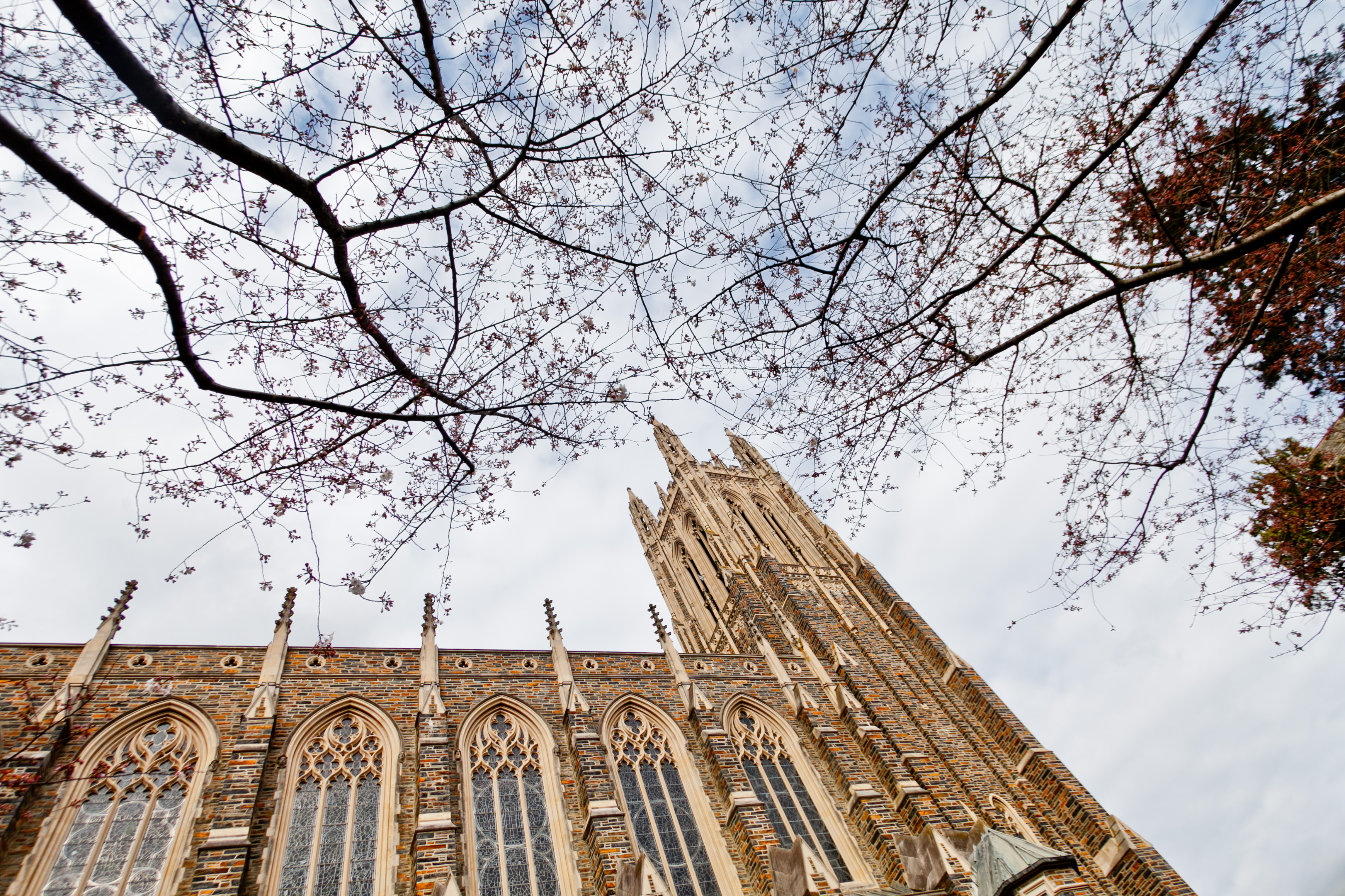 Duke Chapel, early spring